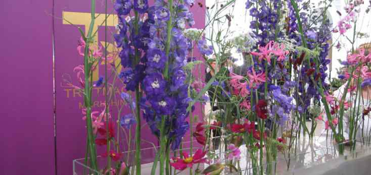 Beispiel: Umfassendes Repertoire an Blumen, Foto: Blumenbinder Trittmacher.