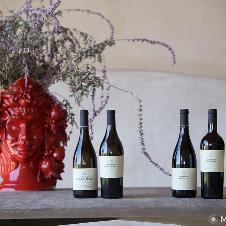 Maestri Milano - Vinos Italianos