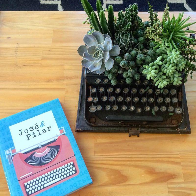 Suculentas na máquina de escrever vintage, porque adoramos ressignificar objetos. O livro preferido do casal, ganhou uma nova capa