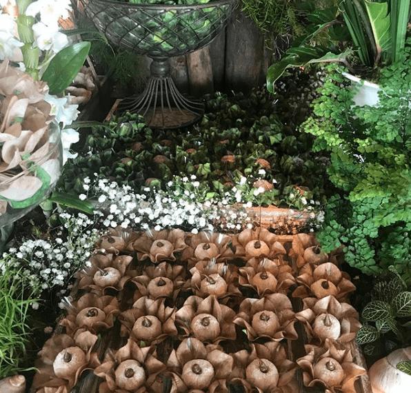 Flori Forminhas