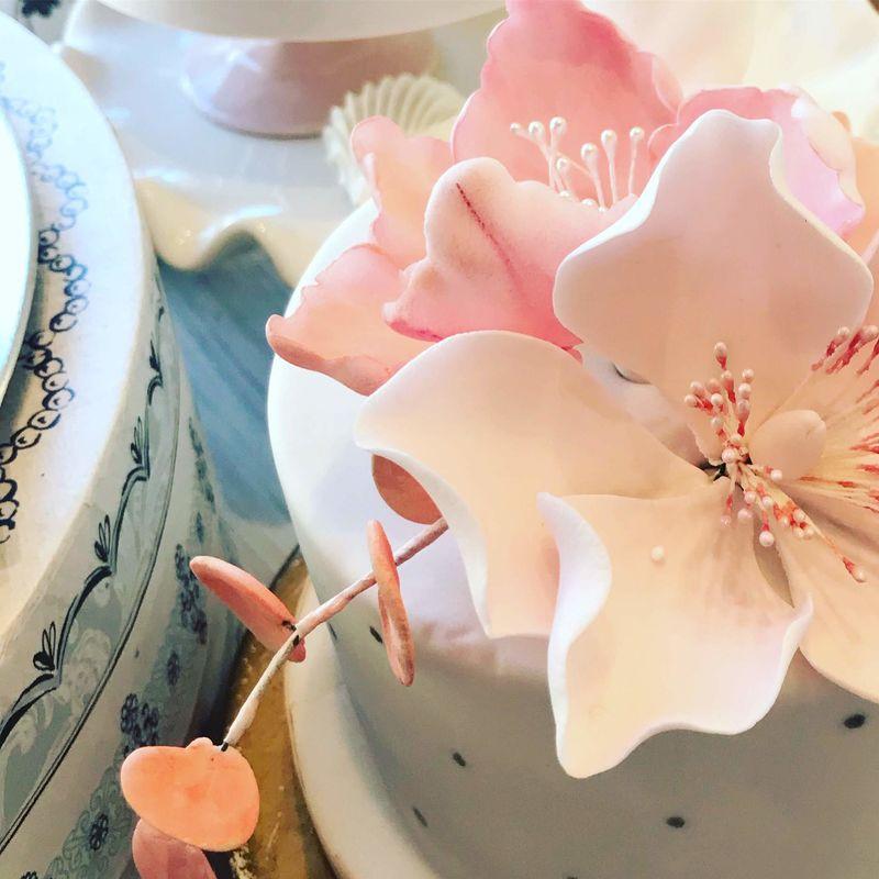 Sweet Cupcakes, The Cake Studio