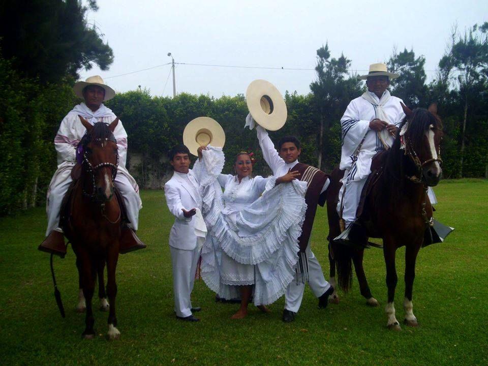 D`Paso Peruano