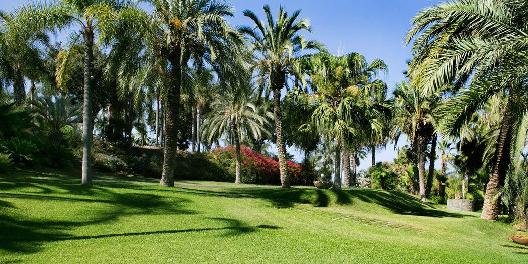 Green Hills Ricevimenti