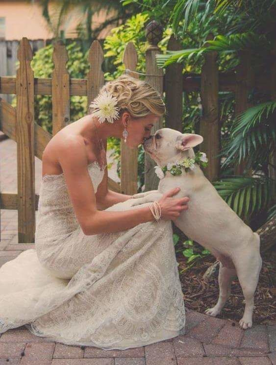Pet of Honor - Wedding Pet Service