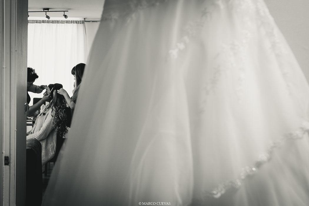 Marco Cuevas fotografo