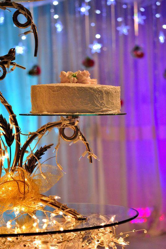 Vip Tours Event & Wedding Planner
