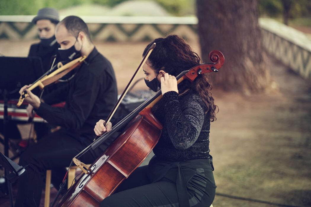 Conjunto Musical Ikebana Sound