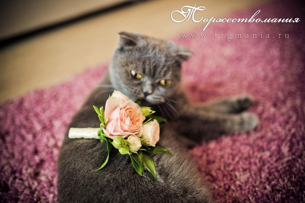 бутоньерка жениха от студии декора и флористики торжествомания