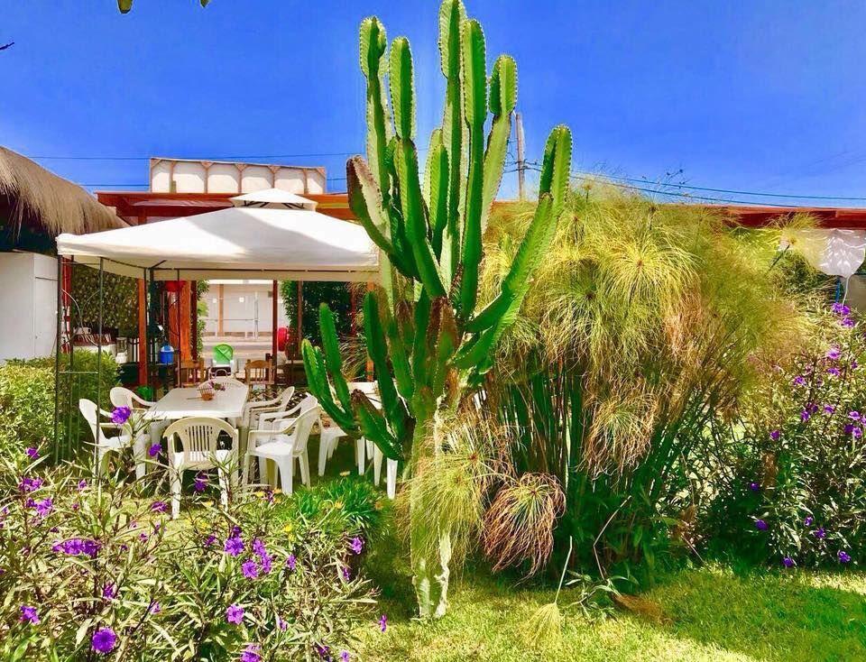 Restaurant Puerto Arrecife