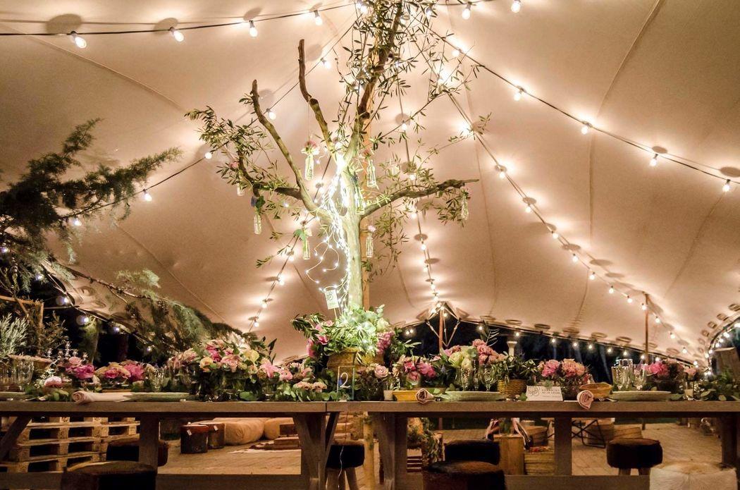 Majestic Wedding Planner & Designer