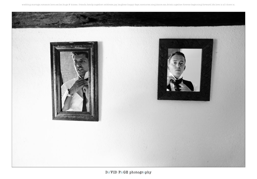 David Photography