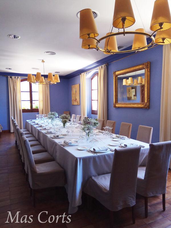 Salón Azul Mas Corts