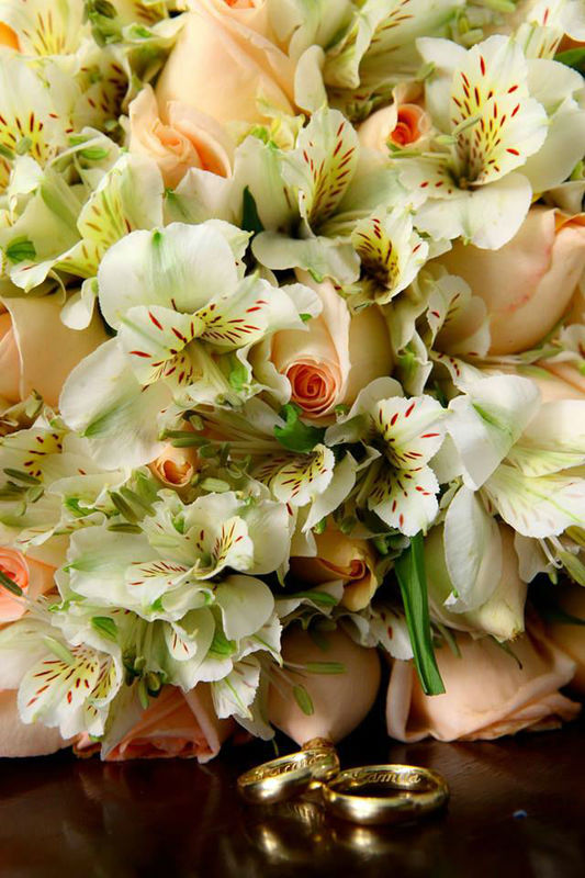 Abba Flowers