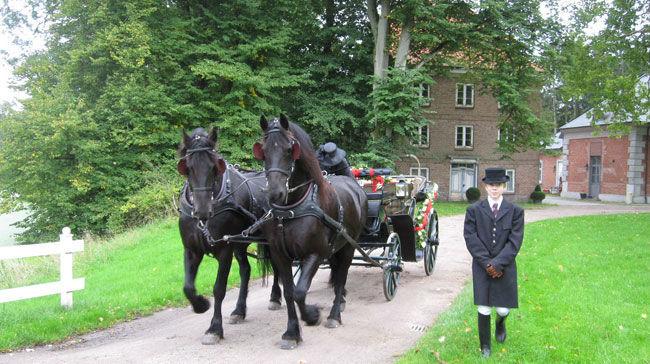 Hochzeitskutschen-Mieten.de