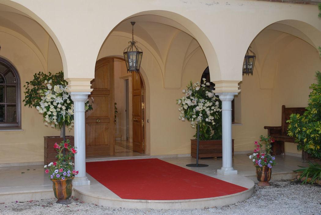 Organisation Marbella