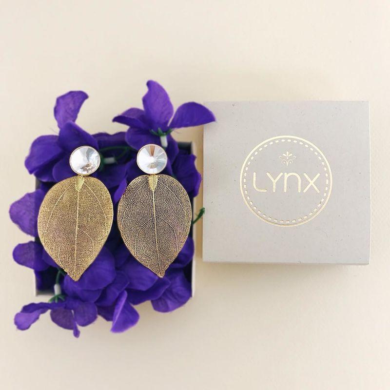 Lynx Accesorios