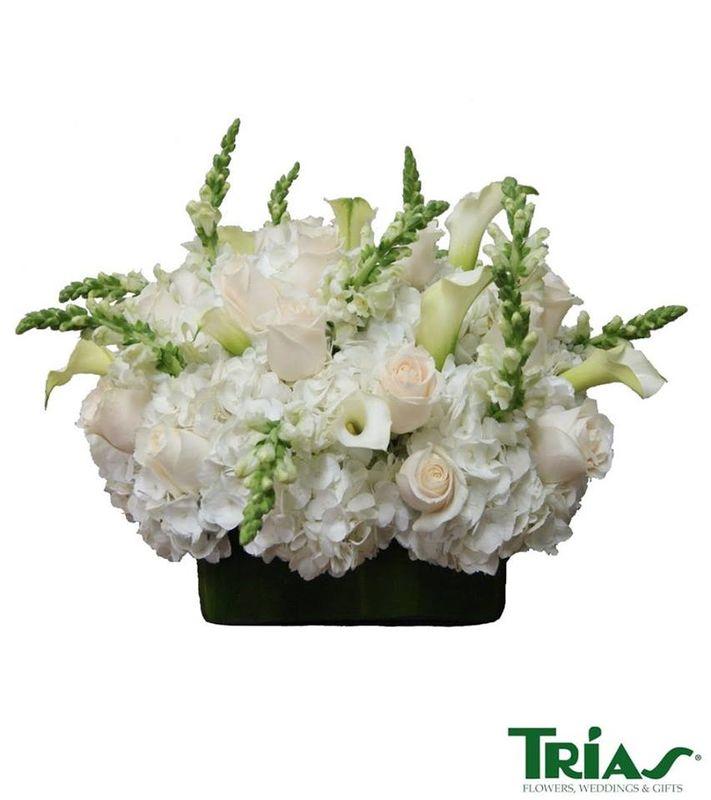 Trias Flowers