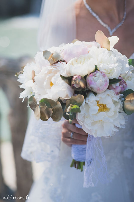 sarl stessy fleurs