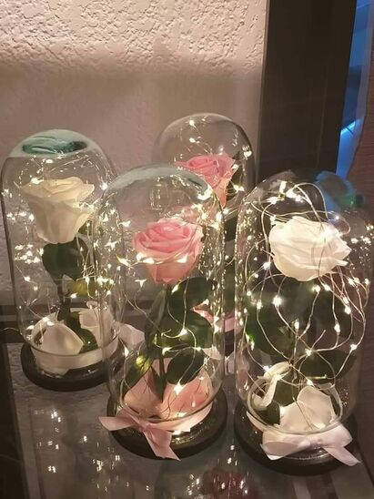 Shadua Flores y Arte
