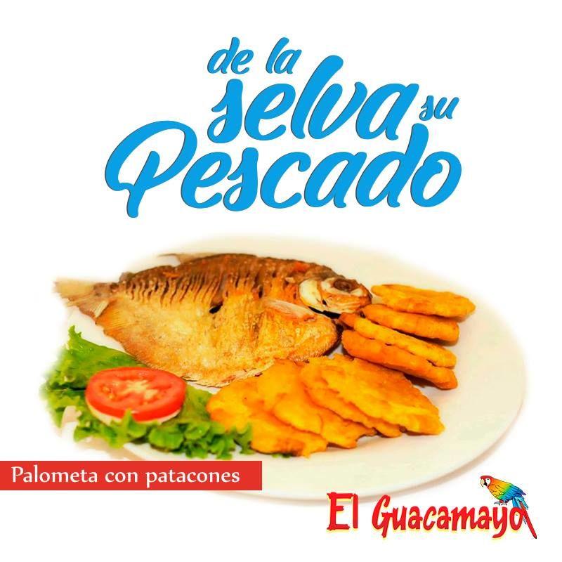 El Guacamayo