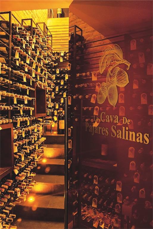 Pajares Salinas