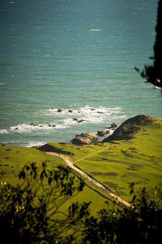 Isla mocha Punta Norte