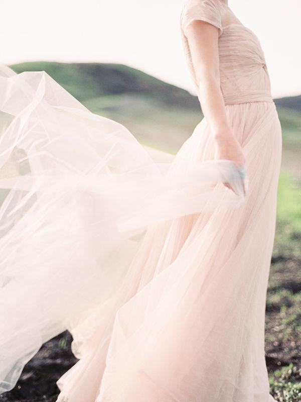 Ashley Ludaescher Photography