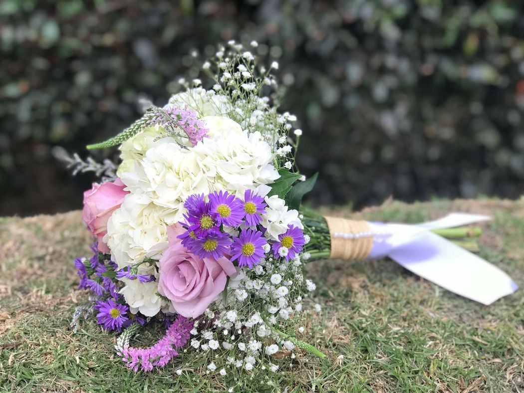 Flores Alheli