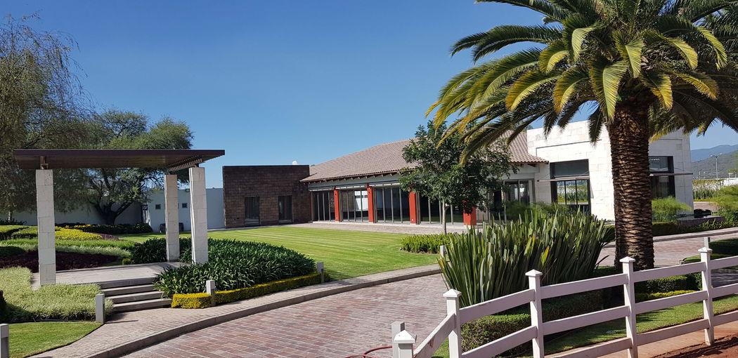 Hacienda Rosina