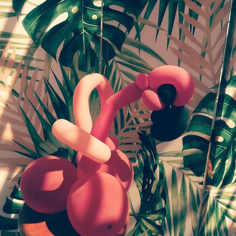 Loulou Fiesta - Animation d'enfants
