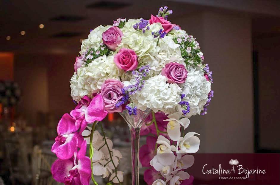 Catalina Bojanine Flores de Esencia