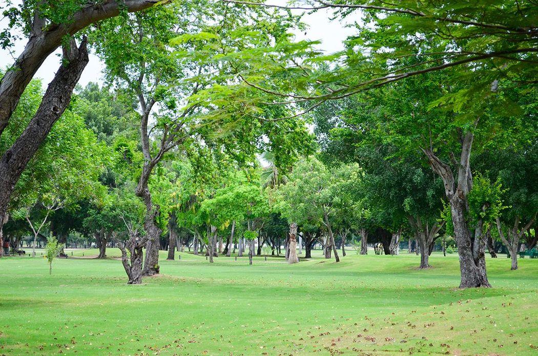 Country Club de Los Mochis