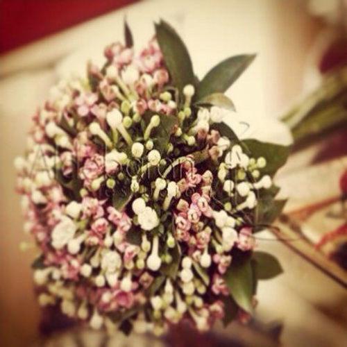 Hazlo con Flores