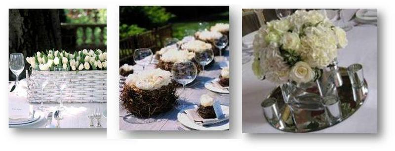 Jardin de Té y Flores