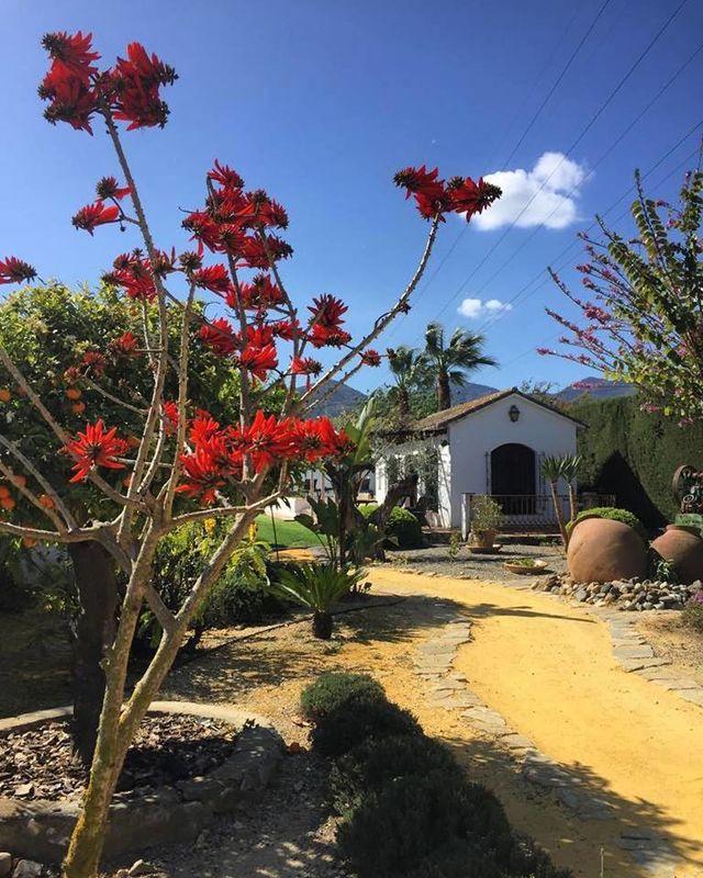 Rancho del Inglés
