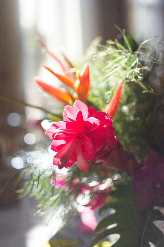 Fleurs, Papiers, Déco