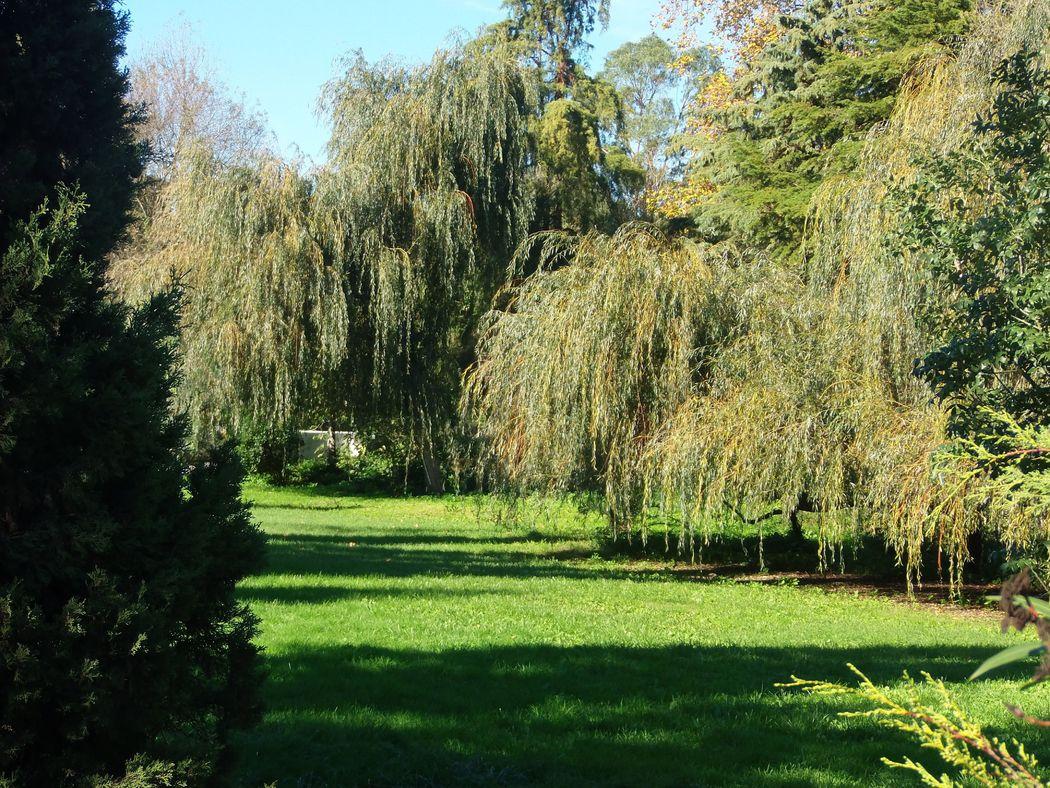 Jardim Canto do Chorão