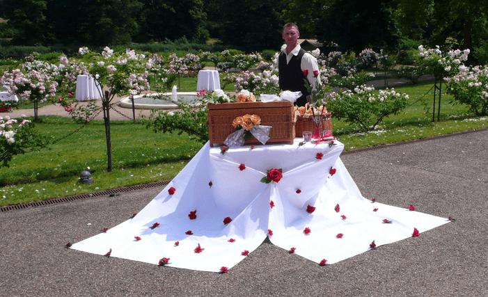 Hochzeitstauben-Paradies