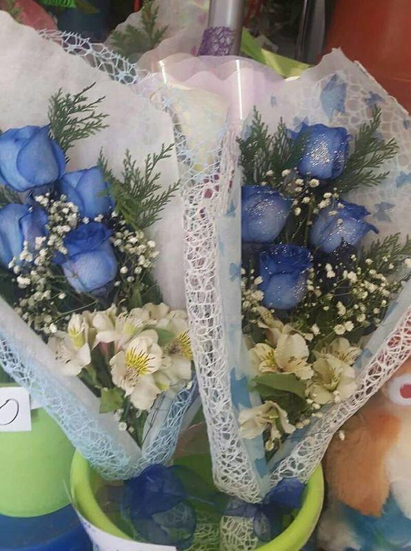 Florería Edén Arica