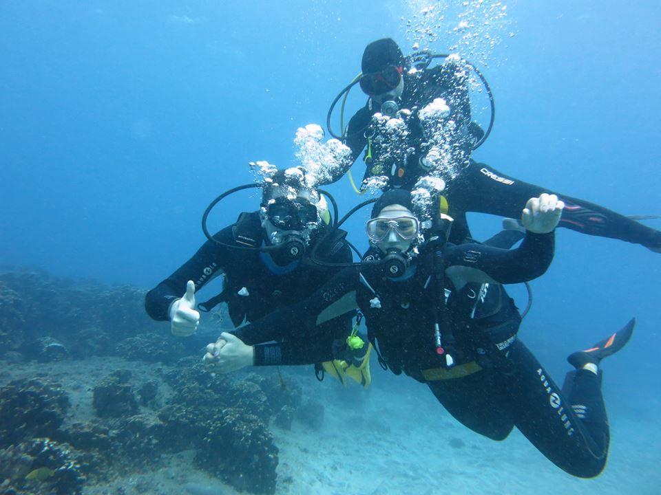 Orca diving center