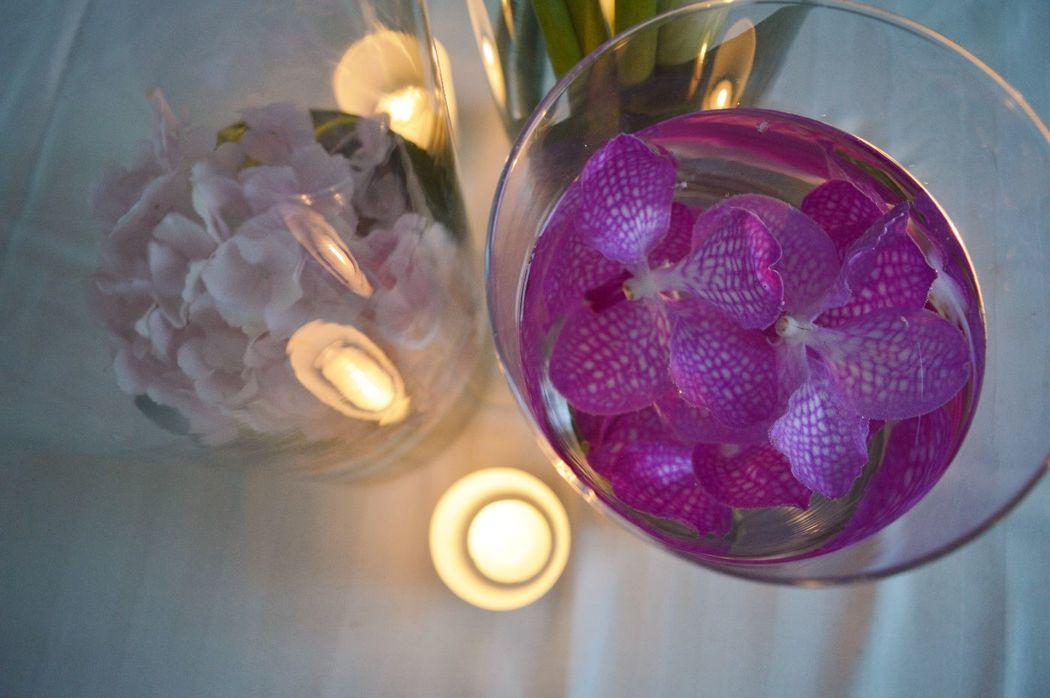 Hortensia et orchidée vanda