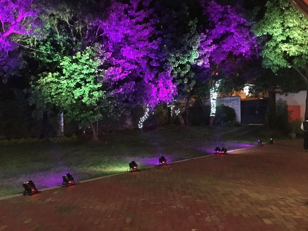 Iluminación Arquitectónica Jardín