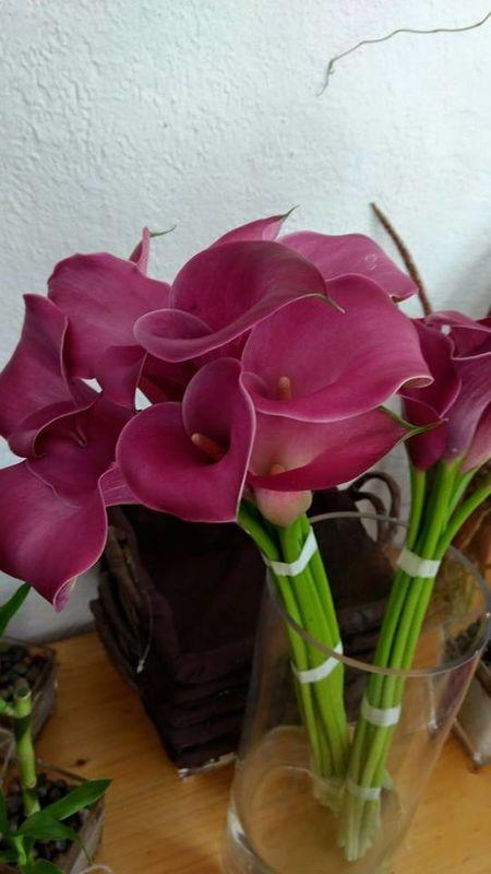 Naturaflor, flores a domicilio