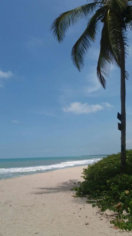 Prima Luna Beach Hostel