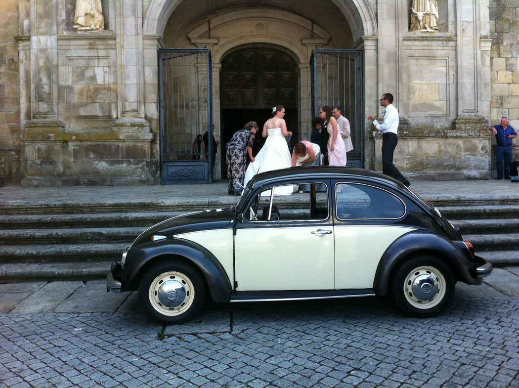 Azulinho & Friends - Carochas para casamento