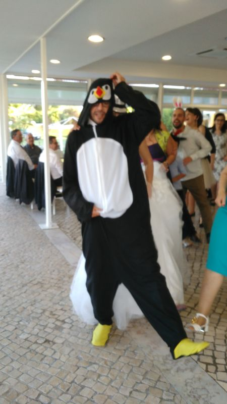 Pinguim Dance