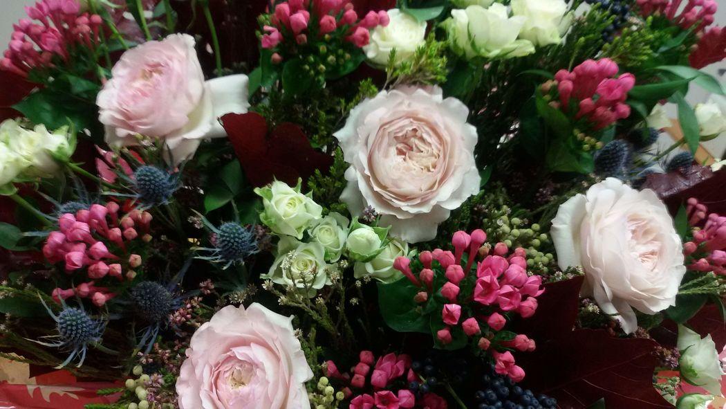 Cúrcuma Arte Floral