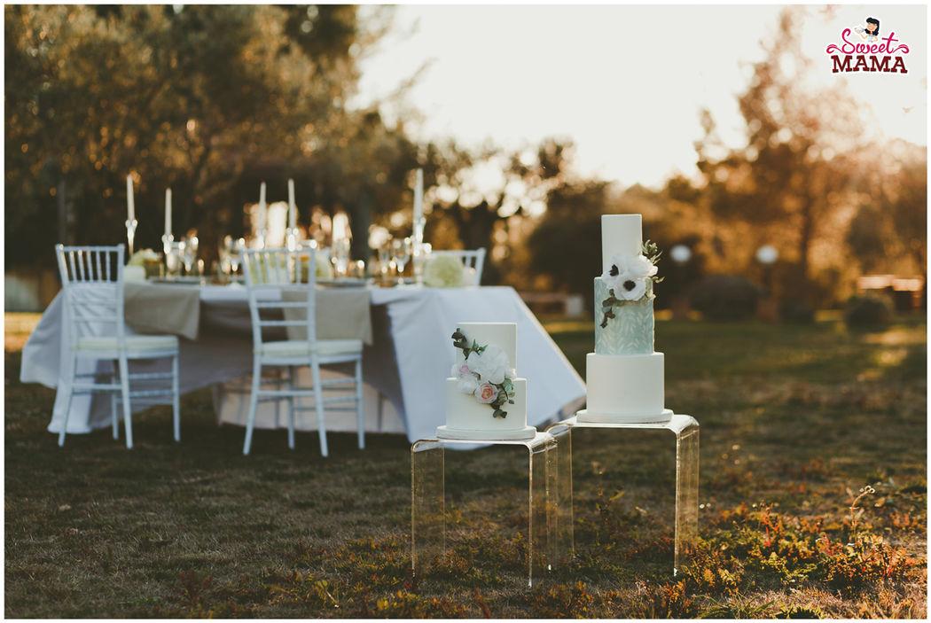 Tartas Pure & White, entre olivos. Foto: Beto Pérez.
