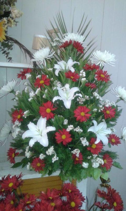 Floreria la Paz