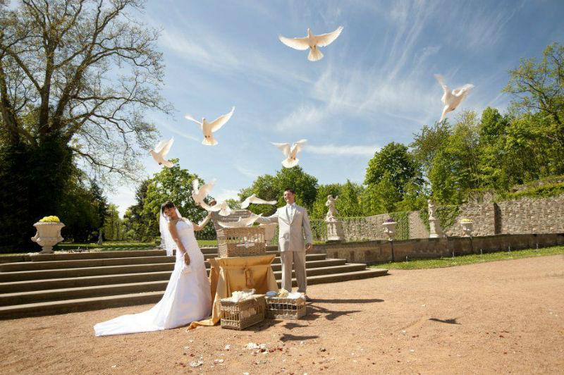 Ihre Hochzeitstauben